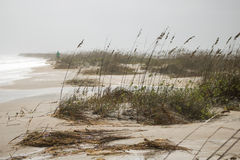 Stormy Beach. Masonboro island in Wilmington, North Carolina as tropical storm 'Joquin' approaches Stock Image