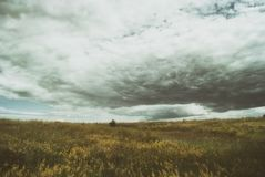 Stormy cirrus cumulus clouds over the vast green meadows. thunderstorm.  Royalty Free Stock Photography