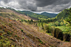 Stormy Clear Cut Stock Photography