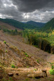 Stormy Clear Cut Stock Images