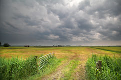 Stormy cloud on sky over farmland Royalty Free Stock Image