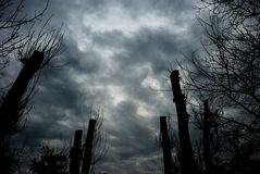 Stormy clouds. Royalty Free Stock Photography