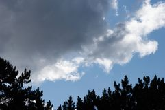 Billowing grey white clouds with blue sky. Stormy weather. Stormy clouds with blue sky and tree silhouettes. Moody weather with both dark grey clouds and royalty free stock photos