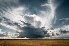 Stormy clouds in the golden fields. stock images