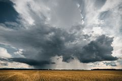 Stormy clouds in the golden fields royalty free stock photo