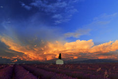 Stormy clouds rising above a picturesque Barn in Lavender Field Royalty Free Stock Image