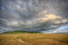 Stormy cloudscape over the summer field. Stormy clouds coming all over the field of wheat Stock Photography