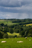 Stormy countryside landscape Royalty Free Stock Photography
