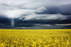 Stormy day Royalty Free Stock Images