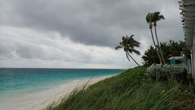 Stormy day on a beach in Abacos Bahamas. With Palm Trees and stormy skies stock images
