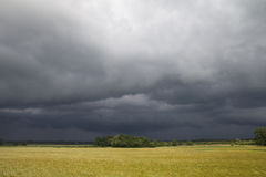 Stormy day. Royalty Free Stock Photography