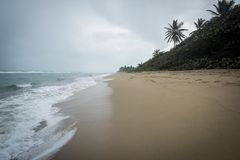 Stormy Caribbean Beach. A stormy day on a surfing beach in Dominican Republic with palm trees, sea foam and dark clouds royalty free stock photography
