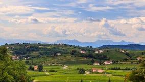 Stormy day in the vineyards of Brda, Slovenia. Rain and sun in the vineyards of Slovenia royalty free stock image