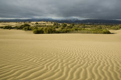 Stormy desert2. Maspalomas Dunes before a storm stock images