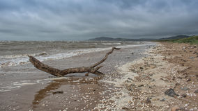 Stormy deserted beach Royalty Free Stock Photos