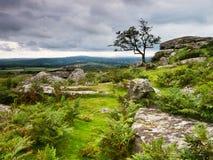 Stormy dramatic evening on Dartmoor, bracken and rocks. Royalty Free Stock Photography