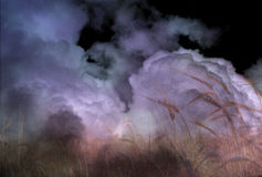 Stormy Field. And dark clouds Royalty Free Stock Photo