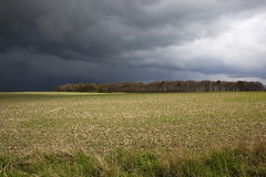 Stormy fieldscape. Stormy clouds over a rural landscape of arable fields and distant woods in springtime Stock Photography