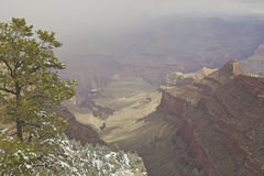 Stormy Grand Canyon Stock Photography
