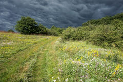 Stormy hill. A herbal hills before a storm Royalty Free Stock Photography