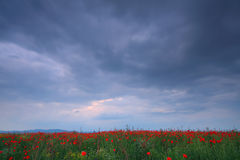 Stormy landscape Stock Image