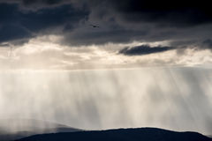 Stormy landscape. With light rays crossing the clouds and the horizon, and a bird flying at a high altitude Royalty Free Stock Photos