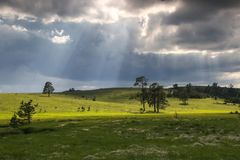 Stormy landscape of the Zlatibor mountain Stock Photo