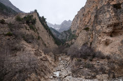 A stormy little river flows in a narrow, mountain gorge in cloudy weather among the Caucasian mountains stock photography
