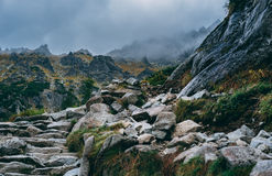 Stormy mountain landscape Stock Image