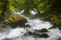 Stormy mountain river. Fast mountain river of Montenegro Stock Photo