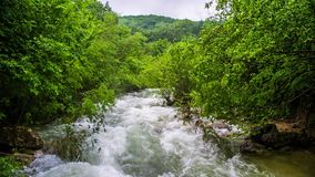 Stormy mountain river in the forest stock video