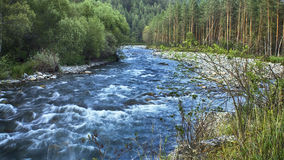 Stormy mountain river royalty free stock images