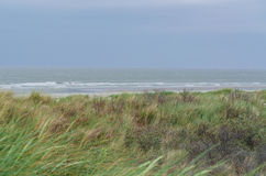 Stormy North Sea in Holland. Stock Photos