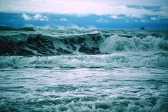 Stormy Ocean Waves. Stormy Pacific Ocean royalty free stock photos