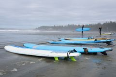 Surf boards at the beach of tofino on Vancouver island on a stormy rainy day royalty free stock images