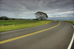 Free Stormy Road Royalty Free Stock Image - 9693336