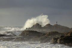 Stormy rocky coast Stock Photo