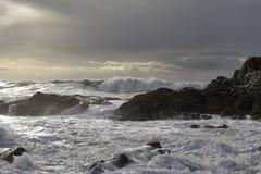 Stormy rocky coast Stock Photography