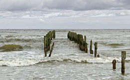 Stormy sea. Stock Images