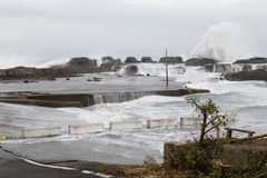 Stormy sea during typhoon Royalty Free Stock Images