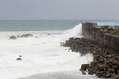 Stormy sea during typhoon, waves crashing on barrier wall Royalty Free Stock Photos