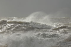 Stormy sea waves Royalty Free Stock Image