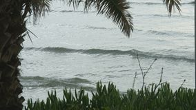 Stormy sea waves splashing on exotic beach with tropical plants. Popular resort. Stock footage stock video