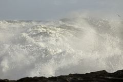 Stormy sea waves Royalty Free Stock Photo