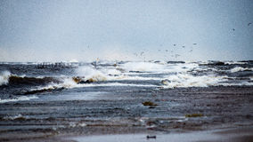 Stormy sea in winter with white waves crushing Stock Photography