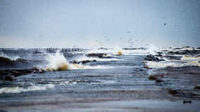 Stormy sea in winter with white waves crushing Stock Image