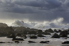 Stormy seascape with beautiful light Royalty Free Stock Images