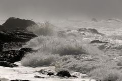 Stormy rocky coast Stock Photography