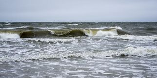 Stormy seascape with the wave Royalty Free Stock Image