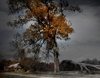 Stormy Skies. Stormy sky in rural Virginia. Dramatic surrealism of death and life Stock Photos
